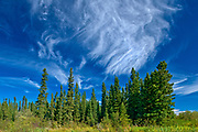 CLouds and boreal forest<br />Grass River Provincial Park<br />Manitoba<br />Canada
