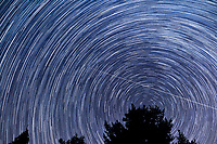 Star Trails Looking North. Composite of 112 images taken between 00:00 and 00:59 with a Nikon D3s camera and 24 mm lens (ISO 400, 24 mm, f/4, 30 sec).