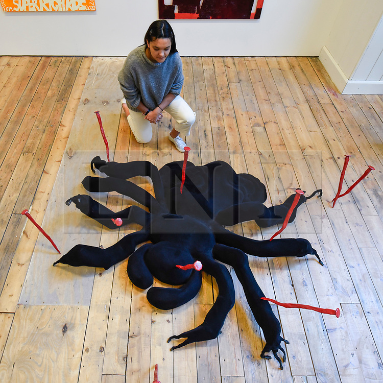 """© Licensed to London News Pictures. 13/02/2020. LONDON, UK. A staff member views """"8 Legs, 2 Fangs, An attitude"""", 2019, by Millie Layton.  Preview of """"Premiums Interim Exhibition"""", an exhibition of new work by second year students in the Royal Academy Schools.   Works by 16 artists are on show 13 February to 11 March 2020 at the Royal Academy of Arts in Piccadilly by artists at the interim point of their postgraduate study at the UK's longest established art school.  Photo credit: Stephen Chung/LNP"""