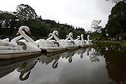 Gramado_RS, Brasil...Parque do Lago Negro em Gramado, Rio Grande do Sul...Lago Negro Park in Gramado, Rio Grande do Sul...Foto: MARCUS DESIMONI / NITRO