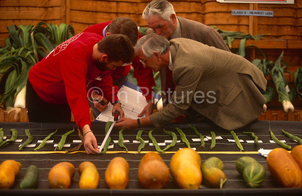Judges measure giant runner beans at the annual Vegetable Olympics, on 30th September 1994, at Spalding, Lincolnshire, England. Sponsored by Garden News Magazine and hosted by a nursery owner,  these vegetables have their growth accelerated by special fertilizers and genetic hormones.