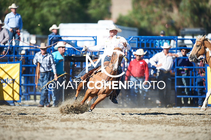 Team roper Clay Tryan of Billings, MT competes at the Rancho Mission Viejo Rodeo in San Juan Capistrano, CA.<br /> <br /> <br /> UNEDITED LOW-RES PREVIEW<br /> <br /> <br /> File shown may be an unedited low resolution version used as a proof only. All prints are 100% guaranteed for quality. Sizes 8x10+ come with a version for personal social media. I am currently not selling downloads for commercial/brand use.