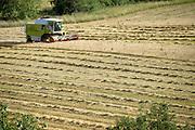 wheat harvesting France