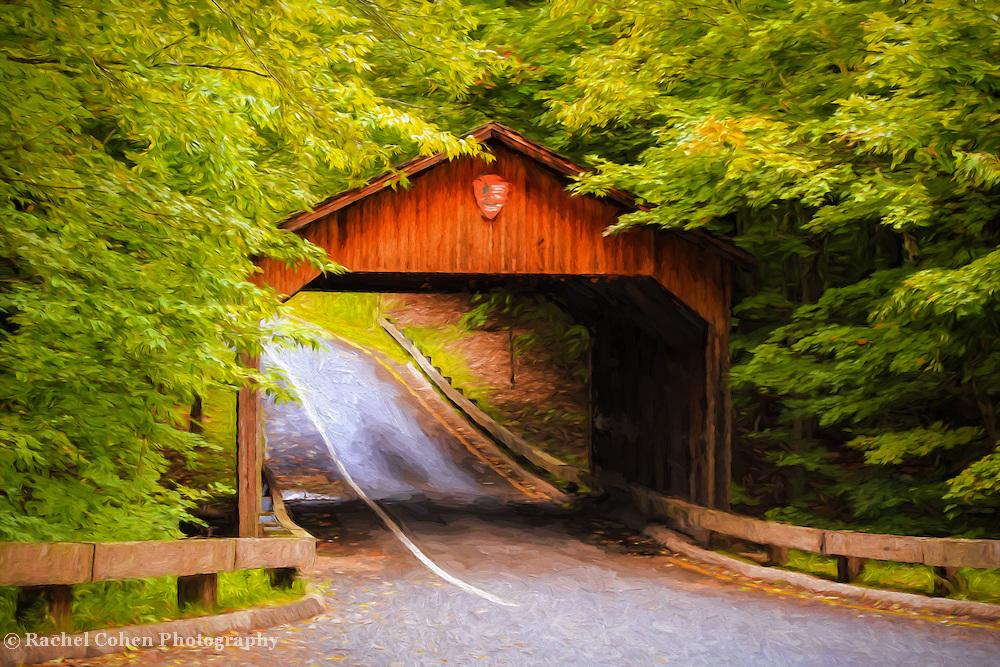 """Covered Bridge Painting"" <br /> <br /> Beautiful covered bridge on Pierce Stocking Drive in Sleeping Bear Dunes National Lake Shore. A wonderful digital painting!"