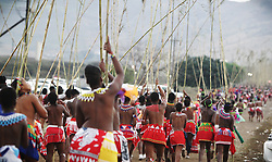 10092018 (Nongoma) A group of Zulu maidens take part in a colourful cultural festival, the Royal Reed Dance festival known as Umkhosi woMhlanga in the Zulu language held at Nongoma, KZN.<br /> Picture: Motshwari Mofokeng/African News Agency (ANA)