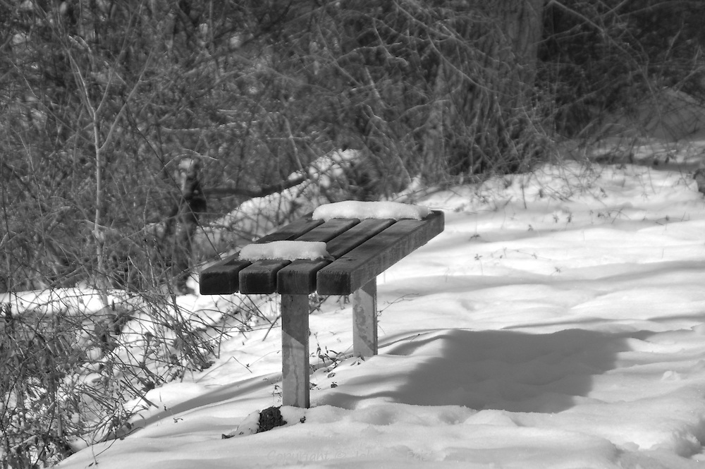 The winter's sun casting long shadows on this snow covered bench along the D and R Canal in Hillsborough, NJ.  The snow and shadows are perfect for black and white.