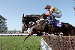 Might Bite ridden by Nico de Boinville jumps over a fence in the RSA Novices' Chase during Ladies Day of the 2017 Cheltenham Festival at Cheltenham Racecourse