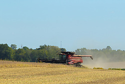 Farmers take to the soybean fields at harvest time in central Illinois with their combines and tractor-wagon combinations while praying for dry conditions and healthy yields.  Image is HDR (High Dynamic Range) processed from 3 frames.