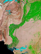 false-colour images feature the Indus River Valley, a lush oasis of vegetation made possible by the Indus River, which is visible as a thin black thread heading toward the Arabian Sea in the false-colour image.