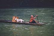 Iban people, woman rowing longboat on Skrang River, Sarawak, Borneo, Malaysia. The Iban were former headhunters.