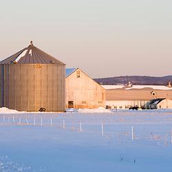Early morning on a farm in Hadley, Massachusetts.  Winter.