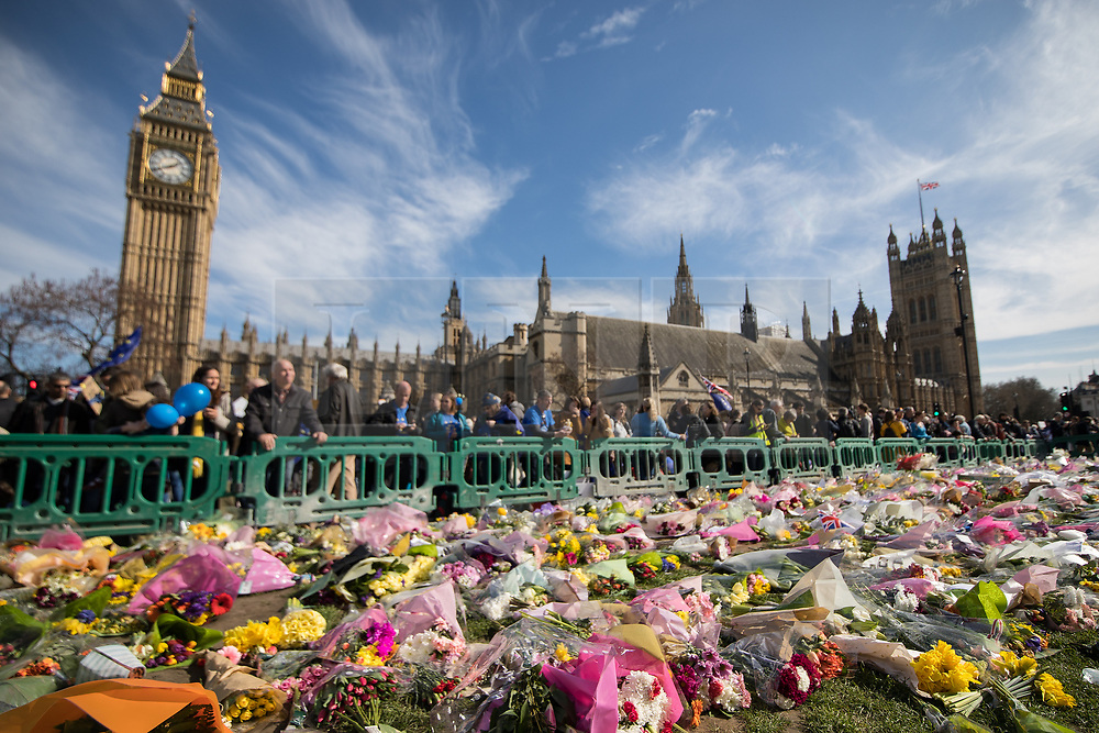 © Licensed to London News Pictures . 25/03/2017 . London , UK . Flowers left across the grass at Parliament Square in tribute to those killed in a terrorist attack . A Unite for Europe anti Brexit march through central London , from Park Lane to Westminster . Protesters are campaigning ahead of the British government triggering Article 50 of the Lisbon Treaty which will initiate Britain's withdrawal from the European Union . Photo credit : Joel Goodman/LNP