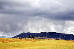 Autumn Storm, Farm, Swan Valley, Idaho