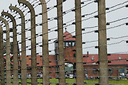 Barb wire fence at Birkenau Death Camp, Poland.