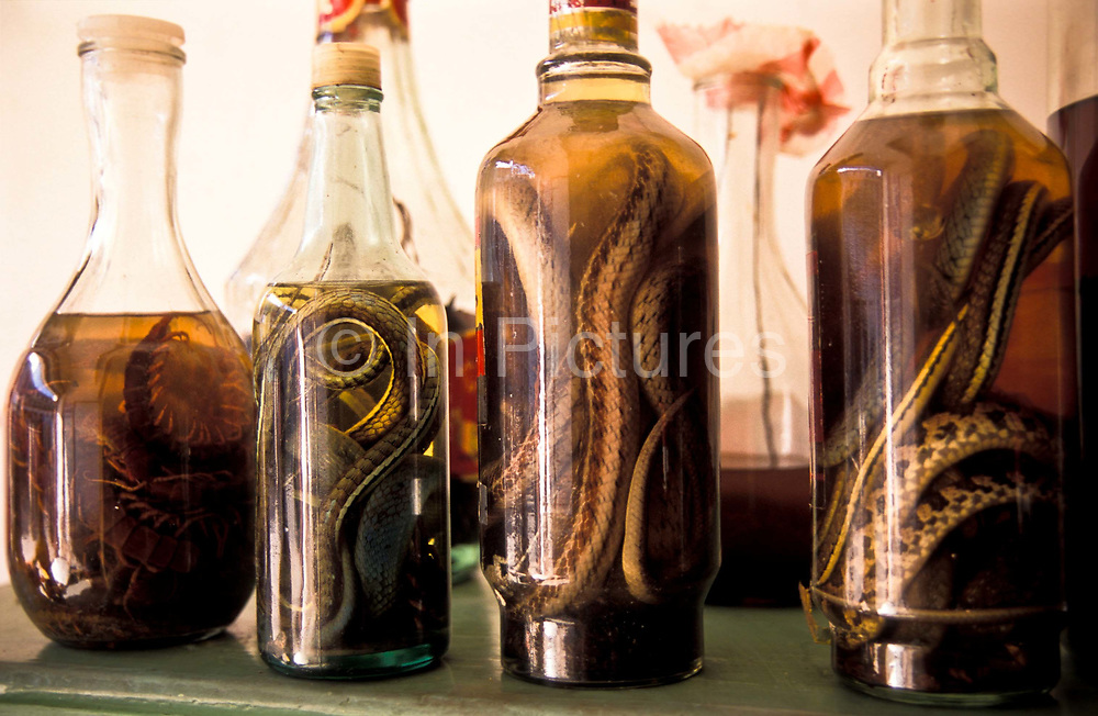 Potions of snakes, centipedes and other rodents used in Chinese medicine for the cure of all manner of ailments, used in conjunction with other remedies such as: barks, herbs, leaves, roots, wood chippings, etc. on view and being used by a Chinese herbal doctor, in Xiao Meng Yang town, Xishuangbanna, China