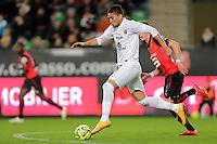 Jose Luis PALOMINO  - 07.03.2015 -  Rennes / Metz -  28eme journee de Ligue 1 <br />Photo : Vincent Michel / Icon Sport