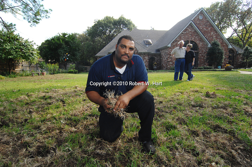 Irving resident, Kevin Reynolds, kneels in his front yard on Lookout Circle in south Irving, Texas, on October 21, 2010 where feral hogs destroyed his lawn earlier this week. His friends and neighbors, Fred and Sharie La Vail, at right, had his law destroyed as well.