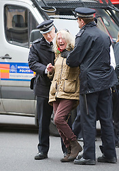 © London News Pictures. 11/11/2011. London, UK. Police arrest a woman believed to be member of the EDL near the Cenotaph following a Remembrance Day service today (11/11/2011). A large group of EDL members where arrested. Photo Credit : Ben Cawthra/LNP