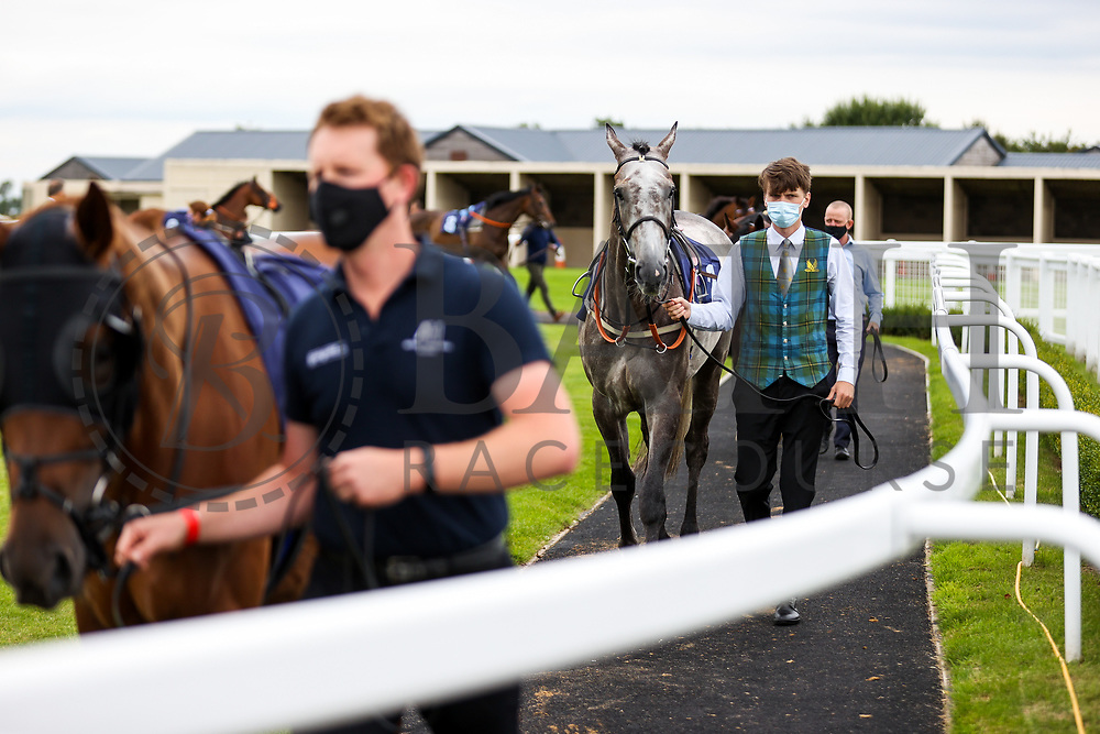 Camouflaged (T: Mark Johnston) ahead of the 16:10 Visit valuerater.co.uk For Free Handicap - Rogan/JMP - 14/07/2020 - HORSE RACING - Bath Racecourse - Bath, England.