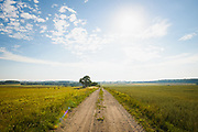 Road through agricultural landscape on bright summer day in July, Mazgramzda, Kurzeme, Latvia Ⓒ Davis Ulands   davisulands.com