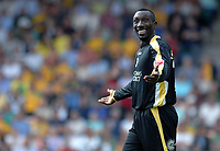 Photo: Ashley Pickering.<br /> Norwich City v Cardiff City. Coca Cola Championship. 01/09/2007.<br /> Jimmy-Floyd Hasselbaink of Cardiff