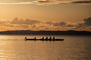 Rowers passing on a calm ocean in the golden early morning sun on Århus Bugten, October 29th 2019, Skæring,Århus, Denmark. The bay is much used by kayaks, rowers and small sailing boats with Kalø Vig Marina nearby. It is autumn and the sailing and rowing season is nearly over. The beach is nearly deserted and is between Århus and the neaby coal power plant Studstrup.