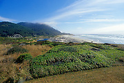Image of Yachats, Oregon, Pacific Northwest by Andrea Wells
