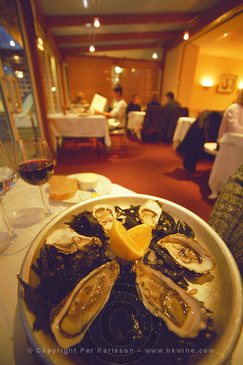 A plate of six oysters and lemon on a table with a glass of wine in a restaurant in the village pauillac in Medoc , Bordeaux, Aquitaine, France