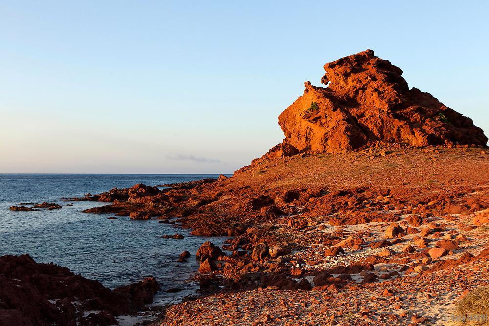 Ras Dihamri Marine Reserve, Socotra island, listed as World Heritage by UNESCO, Aden Governorate, Yemen, Arabia, West Asia