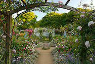A view through an arbour to the circular  Millienium rose Garden inThe Seigneurie Gardens, Sark, The Channel Islands, UK  Rose on the arbour is Rosa 'Mortimer Sackler'.  Roses on the ground are Rosa 'William Shakespeare' and Rosa 'Lady Salisbury'.