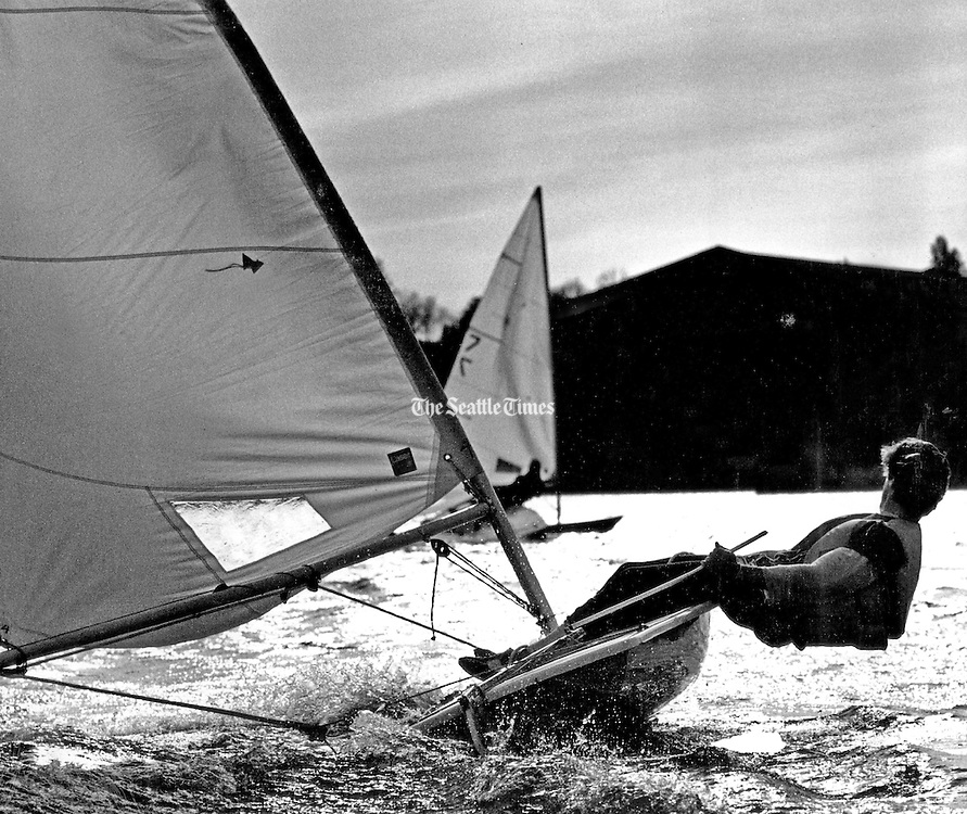 A Laser skipper hikes to starboard to keep his boat balanced during a race on Lake Washington. (Josef Scaylea / The Seattle Times, 1981)