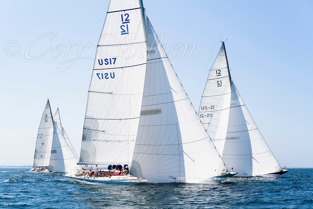 Weatherly sailing in the Opera House Cup regatta.