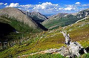 Overlooking the Birch Creek drainage from the Continental Divide in the Bob Marshall Wilderness Area. Lewis and Clark National Forest, Montana