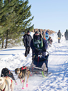 Rita Wehseler of Tofte, MN sets off on her ten-dog class sled race on Sunday, 2 Feb 2014. Scenes from the Apostle Islands Sled Dog Race, hosted by the Bayfield Chamber of Commerce, near Bayfield, WI