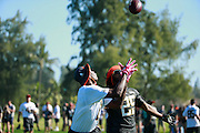 January 29 2016: Team Irvin Julio Jones during the Pro Bowl practice at Turtle Bay Resort on Oahu, HI. (Photo by Aric Becker/Icon Sportswire)