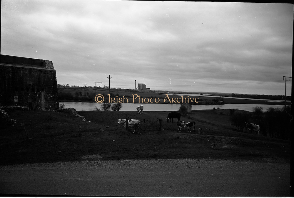 06-10/04/1964.04/06-10/1964.06-10 April 1964.Views on the River Shannon. A pleasant mixture of historical,industrial and rural life on the banks of the Shannon near Shannonbridge Co. Offaly. In the background is the E.S.B. peat burning power station and the old artillery fort on the left..