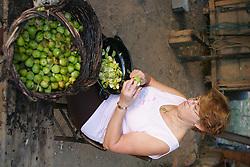 Uma senhora faz doce de figo em sua propriedade, no Vale dos Vinhedos,  municipio de Bento Gonçalves, serra gaucha.FOTO: Jefferson Bernardes/Preview.com