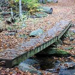 Trail bridge along the Falls Trail in Ricketts Glen State Park, Benton, PA, USA