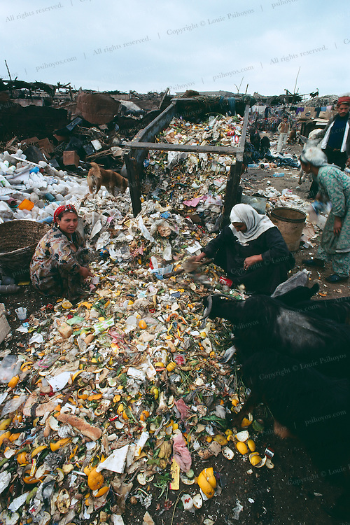 Coptic Christian Community in Cairo, Egypt home to the zabbaline who have the hereditary rights to pick up trash in Cairo.