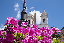 April 30, 2019 - Roma, RM, Italy - Traditional exhibition of azaleas along the Spanish Steps in Rome (Credit Image: © Matteo Nardone/Pacific Press via ZUMA Wire)