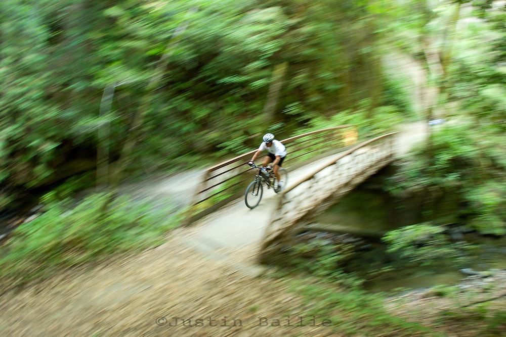 Man mountain biking through lush forest in the Santa Cruz mountains, CA.