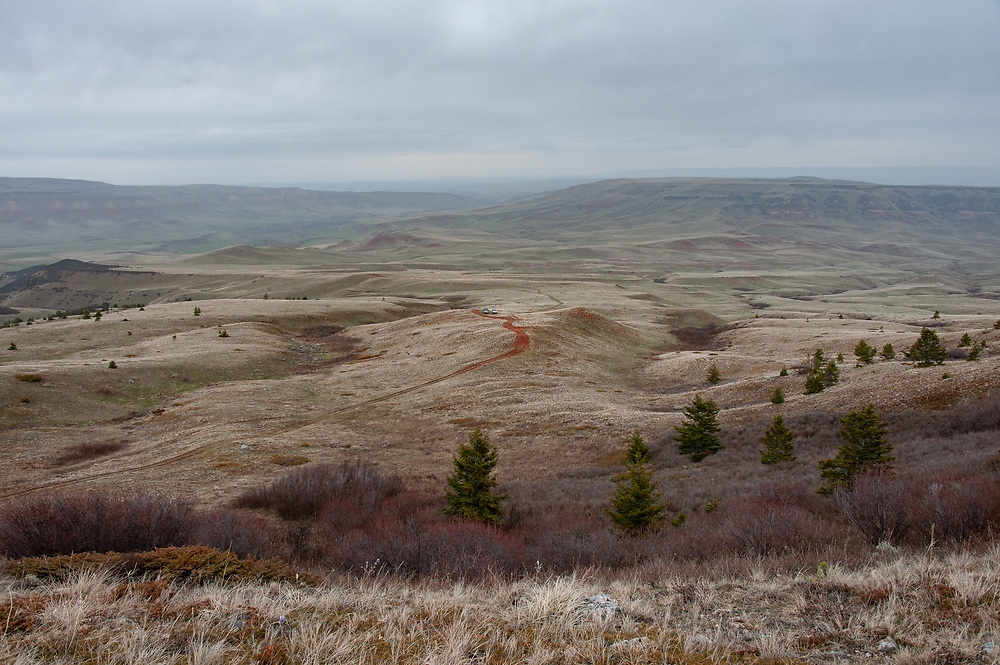 The view back towards the vehicles from along the trail that Clayvin Herrera followed game into the Big Horn National Forest in Wyoming and off of the Crow Reservation in Montana.