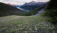 Spray Lakes from West Wind Pass, Kananaskis Alberta