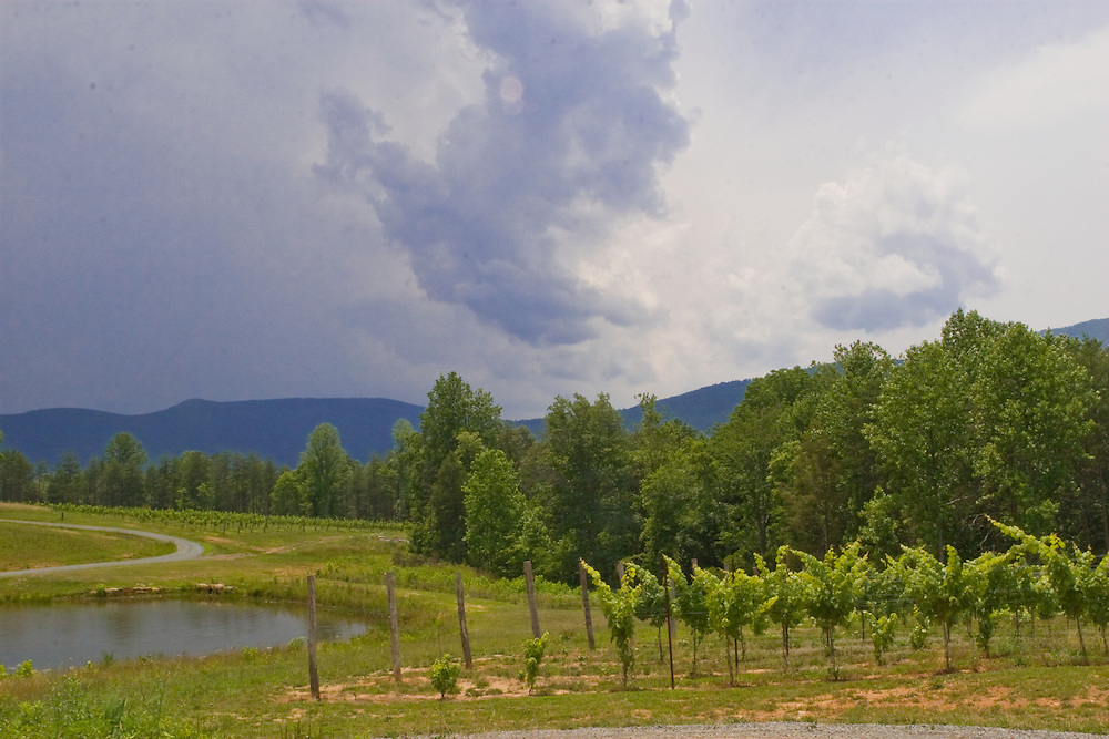 A storm approaches Mountfair Vineyards.
