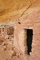 Anasazi ruins at Perfect Kiva Site, Bullet Canyon, Grand Gulch Primitive Area, Cedar Mesa Utah Bears Ears National Monument