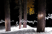 A headlamp traces a trail of light through a stand of trees in a snow-covered forest in North Cascades National Park, Washington.