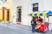 A food vendor selling hot dogs in front of a Spanish colonial style building in the Barrio Antiguo or Spanish Quarter neighborhood adjacent to the Macroplaza Grand Plaza in Monterrey, Nuevo Leon, Mexico.