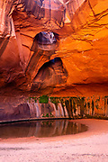 Photograph of the Golden Cathedral, a geological feature in the Grand Staircase-Escalante National Monument, Escalante, Garfield County, Utah, USA.