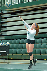 26 August 2017:  Bethany Loftus during the green-white scrimmage of the Illinois Wesleyan Titans in Shirk Center, Bloomington IL