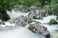 River Lepenjica, cascades, rocks in water<br /> Triglav National Park, Slovenia<br /> June 2009